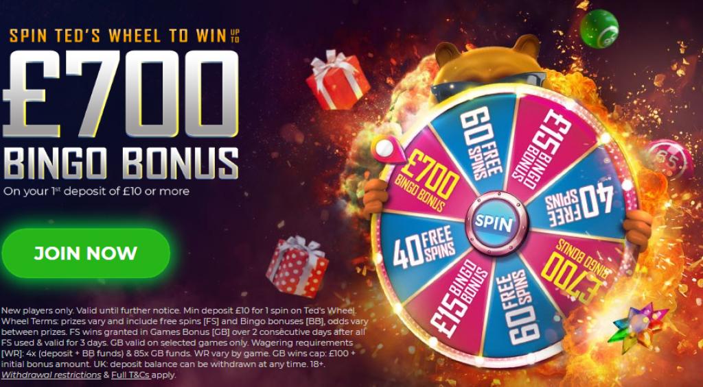 ted bingo bonus